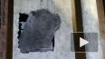 В Каменке спасли кота, который четыре дня просидел ...