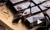 """Испанские ученые: """"Горький шоколад защищает от развития сахарного диабета"""""""