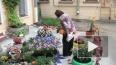 Цветочный рай во дворе дома 22 по 9-ой Советской собираю...