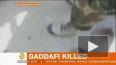 Семья Каддафи подает в Гаагский суд на НАТО за убийство ...