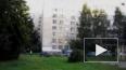 На Богатырском проспекте жители обнаружили сидящего ...