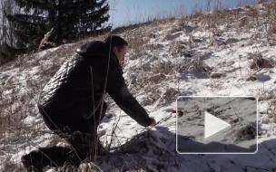 Выборгские поисковики помогли жителю Белоруссии найти могилу погибшего на войне деда