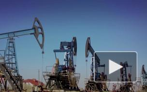 Цены на нефть на открытии торгов обвалились на 8%