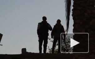 В МИД рассказали, что необходимо для нейтрализации угрозы ИГ* в Сирии