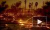 """""""Калифорния в огне"""": Число жертв пожара возросло до 66 человек"""