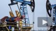 Лукашенко: Белоруссия готова закупать нефть в России ...