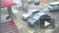 В Челябинской области мужчина убил собаку на глазах ...