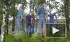 В Муринском парке появились метровые куклы