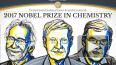 Нобелевскую премию по химии вручили за технику мгновенной ...