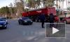Во Всеволожском районе водитель сбил троих детей и женщину