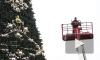 На Дворцовой устанавливают старую новогоднюю елку с новыми украшениями