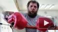 Александр Емельяненко вновь устроил дебош (видео)