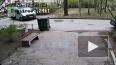 """Видео: неизвестный украл айфон у водителя """"Газели"""""""