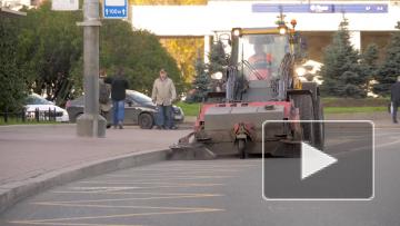Жители Петербурга оценили качество осенней уборке ...
