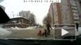 В Кирове ребенок выпал из санок на дорогу, родители ...