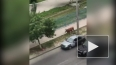 Видео из Махачкалы: Полиция открыла огонь по бешеной ...