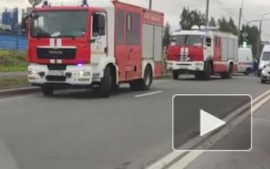 Утром на Парнасе произошло массовое ДТП