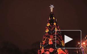 По щучьему велению! Михаил Светин нарисовал рождественскую сказку