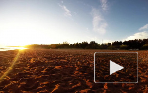 Около20 петербургских пляжей готовы к летнему сезону