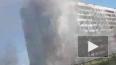 Видео из Петербурга: на Придорожной аллее произошел ...