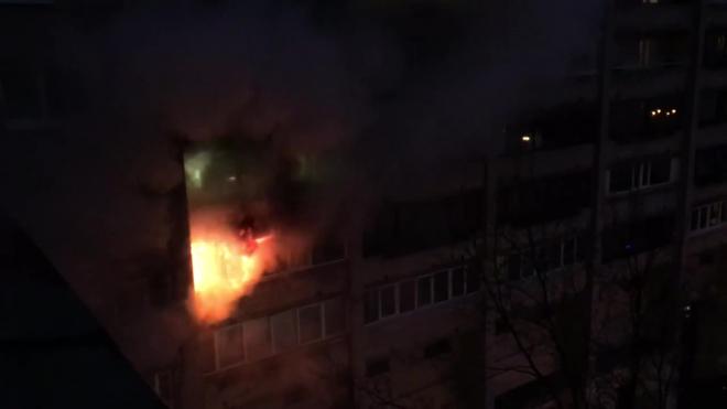 Все происшествия Петербурга за 28 декабря: фото и видео