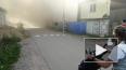 Видео: в деревне Бегуницы горит частный дом
