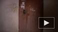 Убийство семьи в Туле раскрыто по горячим следам