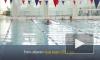 Спортивные перспективы Выборга стали ярче с новым бассейном