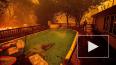 Огненный торнадо: Бушующий лесной пожар в Калифорнии ...