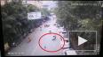 Видео: в Китае гусь упал с дерева и сбил мотоциклистку