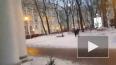 Видео: Эрмитаж изменил день бесплатного посещения. ...