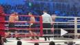 Кокляев и Емельяненко могут провести новый бой по ...
