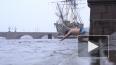 И в снег, и в карантин: как петербургские моржи устраивают ...