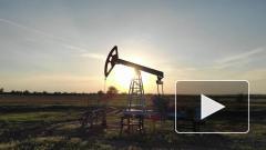 Цена нефти Brent поднялась до $60 за баррель