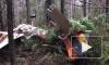 Опубликовано видео с места крушения легкомоторного самолета в Пермском крае