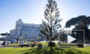 Скандал, смех и слезы: В Риме осыпалась главная рождественская ель за 50.000 евро