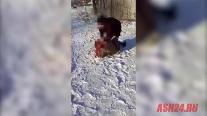 Полиция Приамурья начала проверку из-за видео с дракой студенток