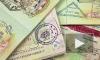 Стало известно число жителей ДНР и ЛНР, получивших биометрический паспорт Украины