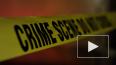 Во Флориде ликвидировали стрелка на авиабазе ВМС США