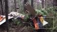 Опубликовано видео с места крушения легкомоторного ...