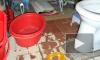 Богомольная москвичка морила голодом в туалете приемную дочь-инвалида