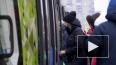 Шушары и Купчино свяжет скоростной трамвай
