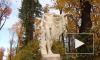 Самые красивые места Петербурга: карта для осенних фотосессий