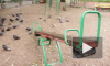 Пропавшего в воскресенье 9-летнего мальчика нашли у ТК в Приморском районе
