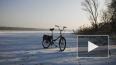 Петербуржцам предлагают поехать на работу на велосипеде ...