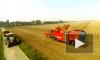 Минтруд расширяет список сельскохозяйственных профессий для надбавки к пенсии