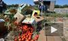 Из санкционных фруктов в деревнях гонят самогон