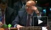 Россия отвергла заявления СБ ООН по операции Турции в Сирии