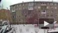 Мужчину, который выбросил из окна собачку в Красноярске, ...
