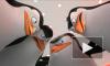 """""""Пингвины Мадагаскара"""" (Penguins of Madagascar): мультфильм от студии DreamWorks Animation заработал 404 млн рублей"""